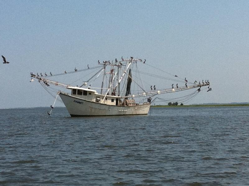 fishing boat near Savannah