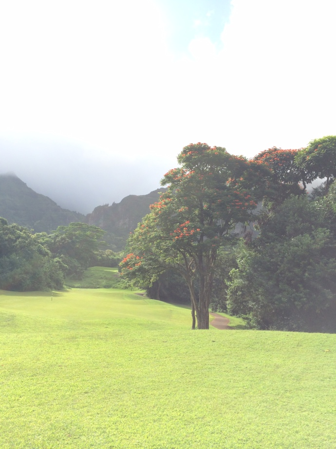 Ko Olau V